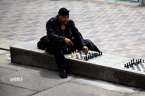 The Chessplayer