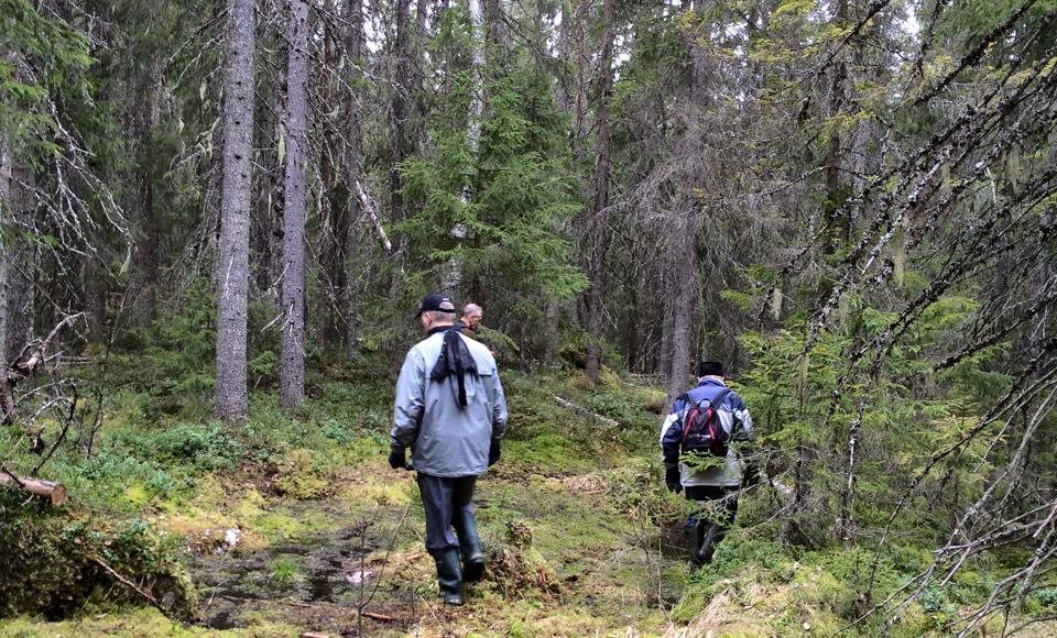 I skogen nära Pålgård